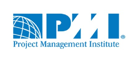 Project Management Institute (PMI®)