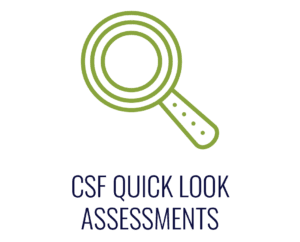 Cyber Security Framework Quick Look Assessments, CMMC