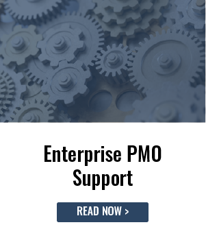 Enterprise PMO Support